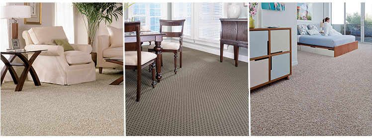 Stainmaster carpet in living room dining room bedroom